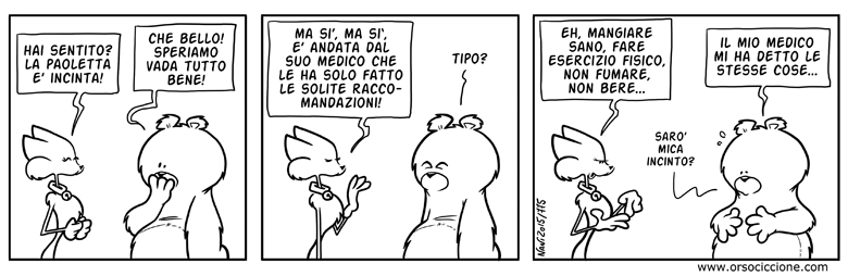 775_orso_incinto